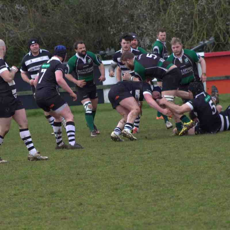 1st XV v Ivybridge 9 April 2016