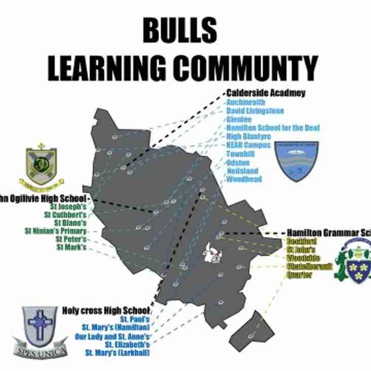 Bulls in the community