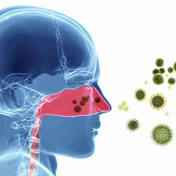 Hay-fever Medication