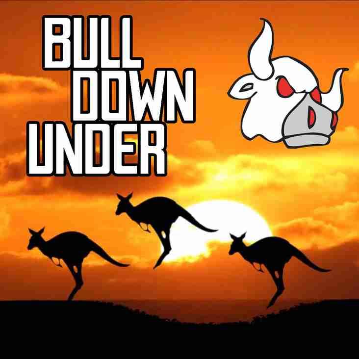 Bull Down Under