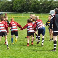 May Junior Festival
