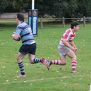 Wetherby beat Ripon with four try victory