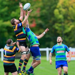 Bulls edged out in thriller
