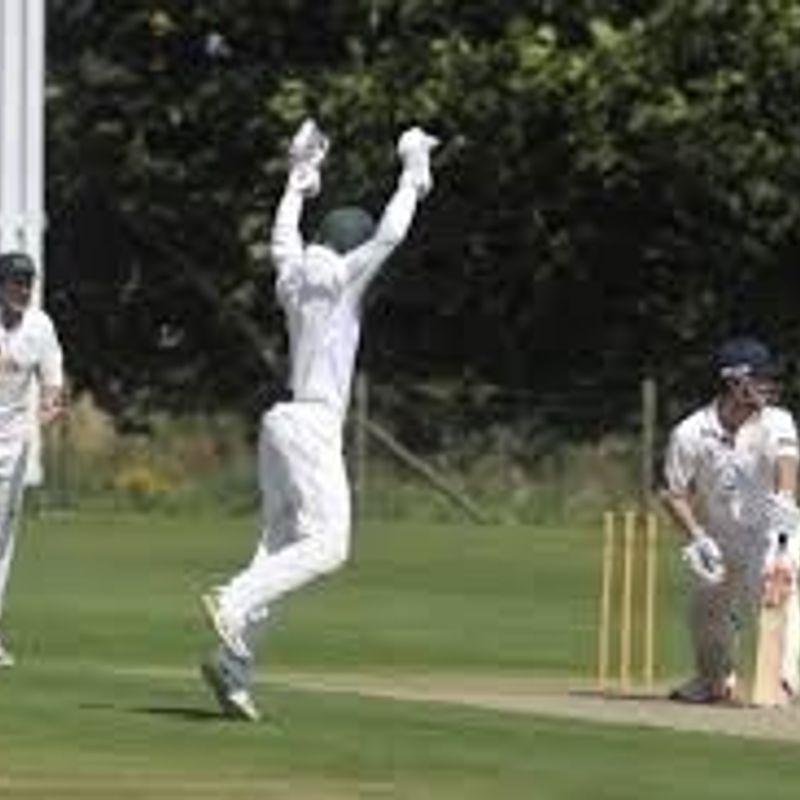 Halstead CC, Essex - 1st XI 179/9 - 184/4 Frinton On Sea CC - 2nd XI