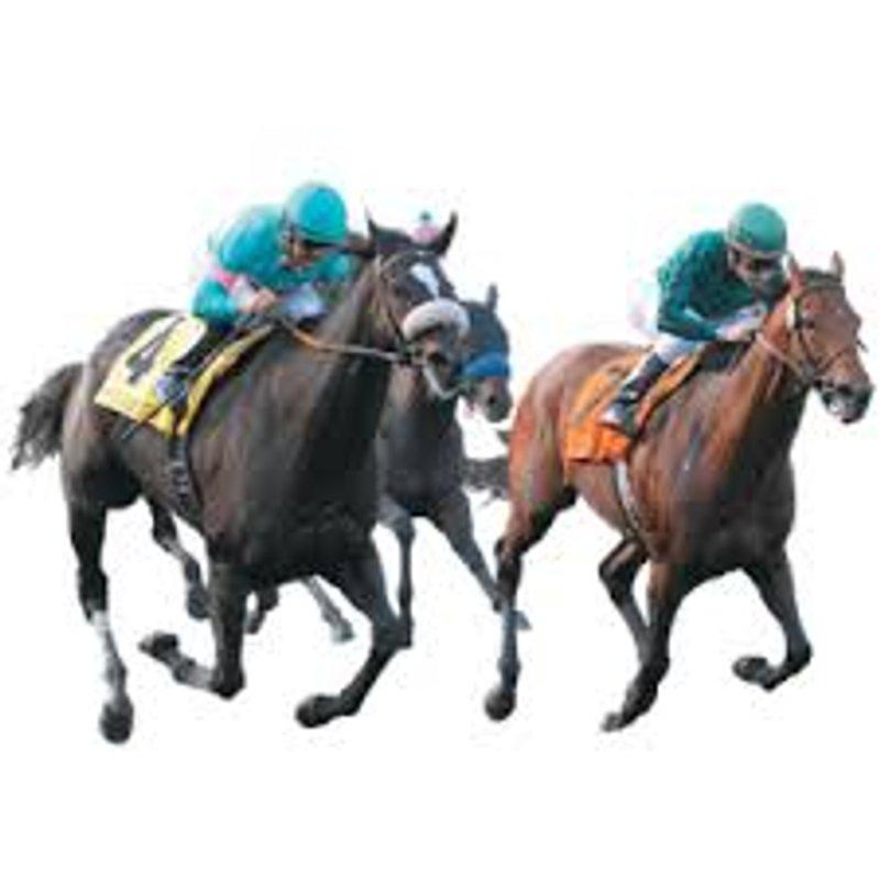 27.10.18 -Race Night at Manse Lane