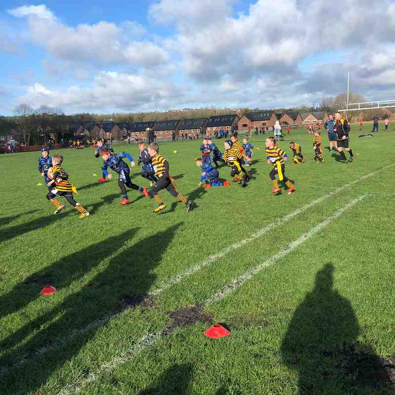 U8s Sunday 10 Feb 2019