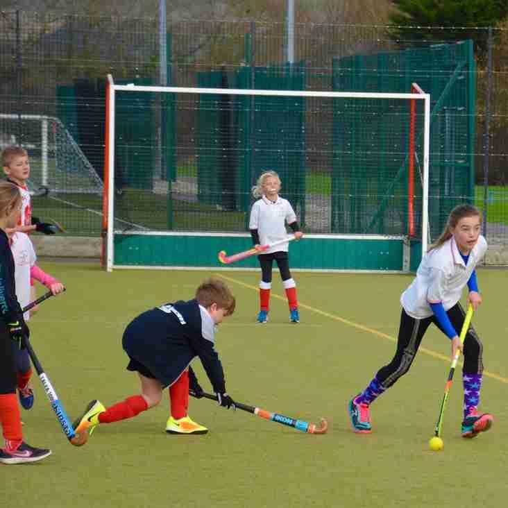 Junior training starts week beginning 8th January