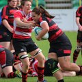 Wasps Can Hold Heads High Despite Away Loss to Birmingham Moseley
