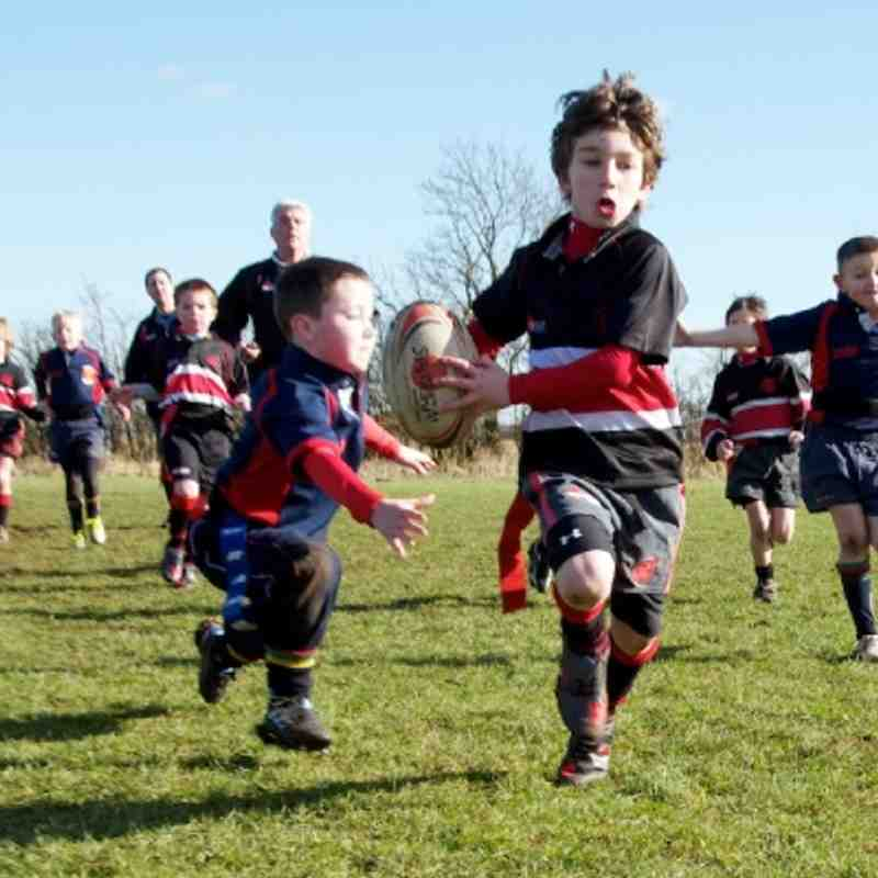 U8's at home against Northampton 18-02-12