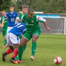 Newcastle Town 0 Frickley 1