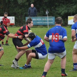 Spartans fight all the way against super Stortford