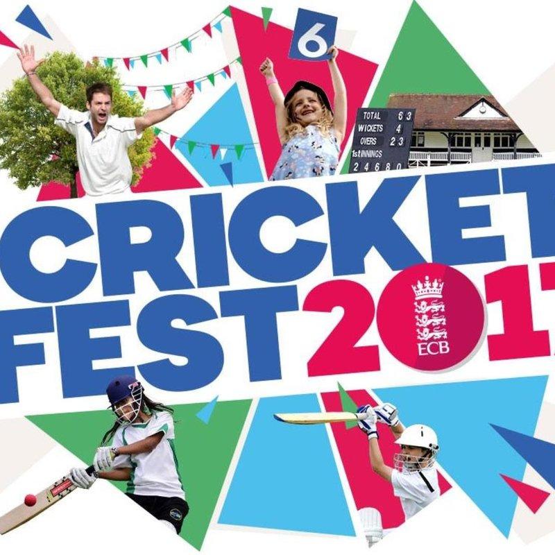 Cricket Fest 2017
