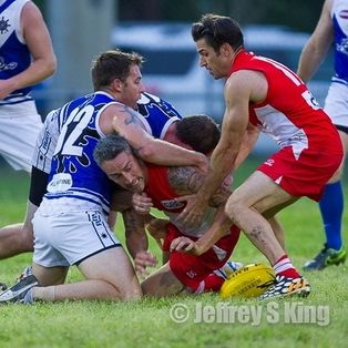 SWANS RACE OUT WINNERS IN USAFL OPENER