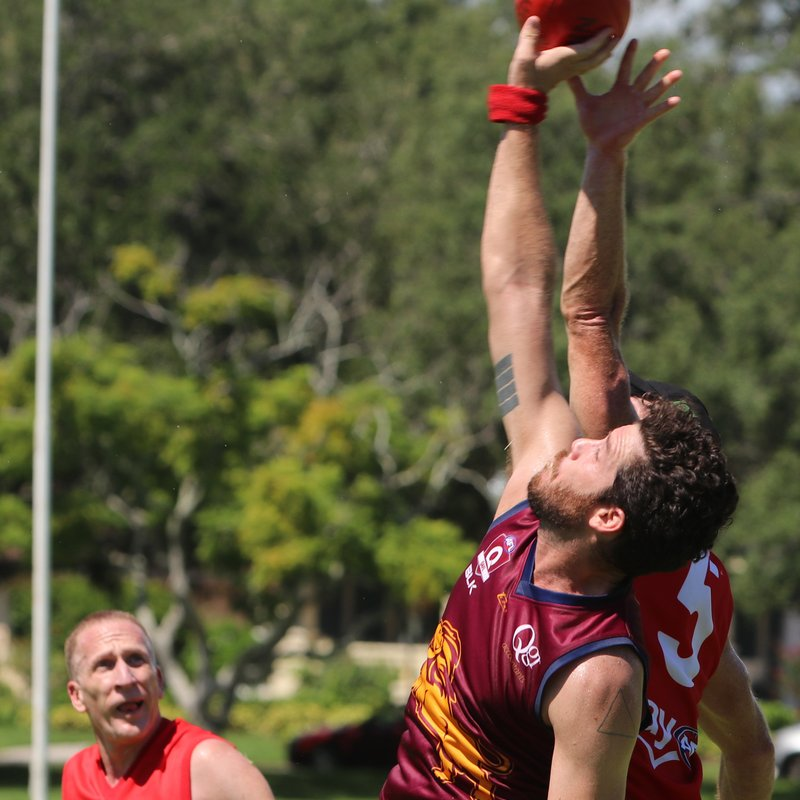 LIONS, BOMBERS PRESSURE BLOODS