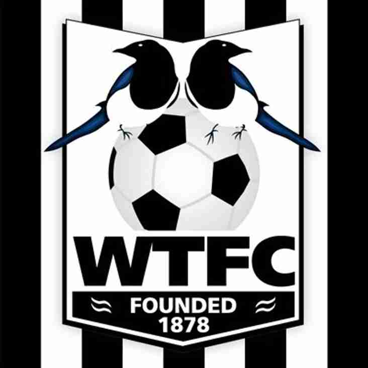 Magpies Looking for Friendly