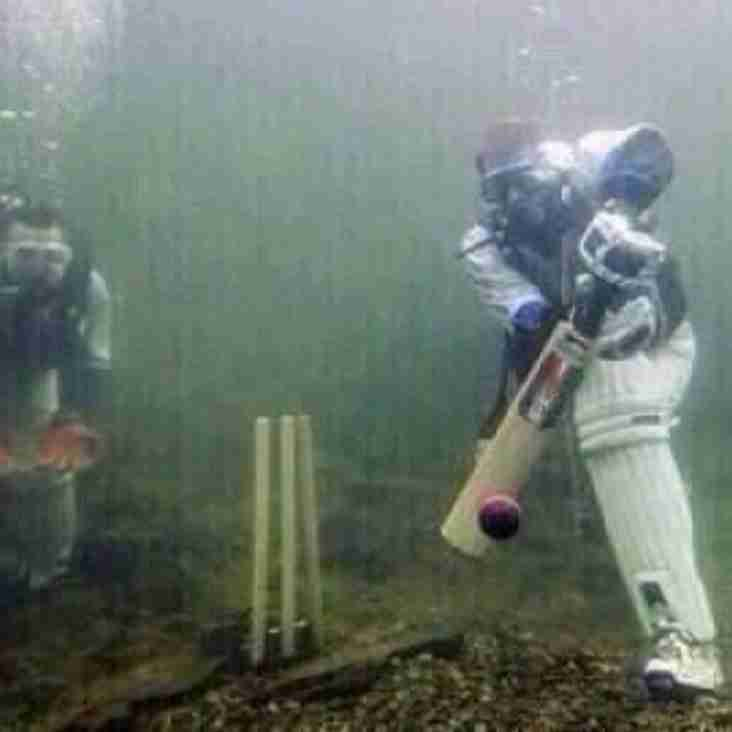 Winter Cricket Game!