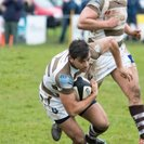Bonus Point Win At Home For Saxons