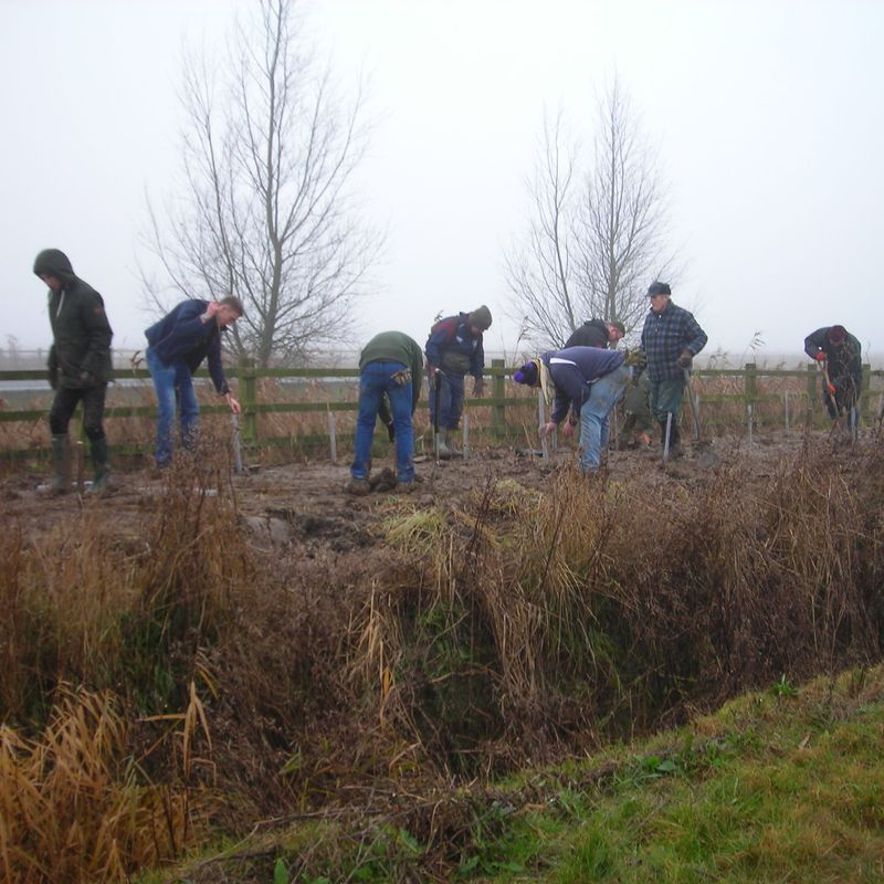 Tree Planting Session - Saturday 25 February from 8am