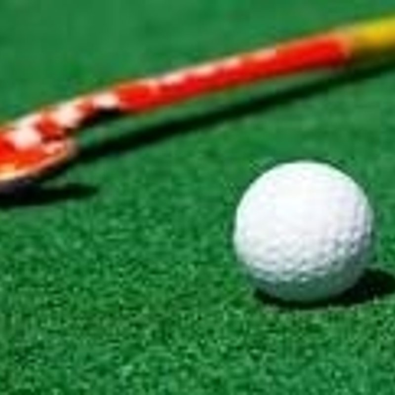 Half Term Hockey for Juniors (Oct / Feb / April)