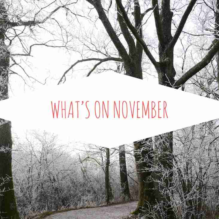 What's on this November at TSC?