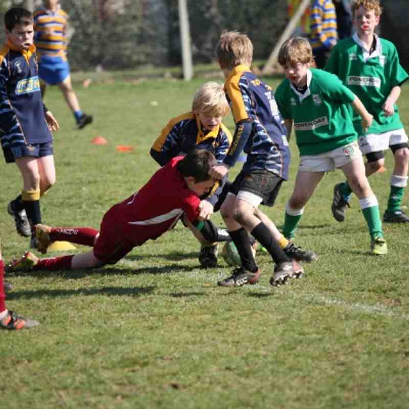 U12 B's at London Irish Festival 18th March 2012