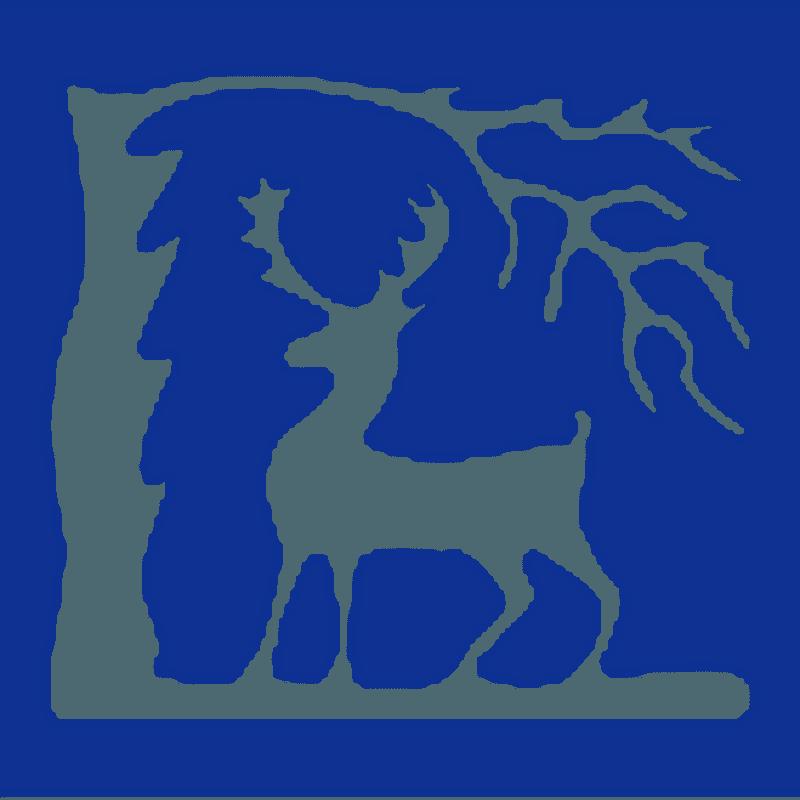 Berkshire Unicorns Gain RFU Affiliation