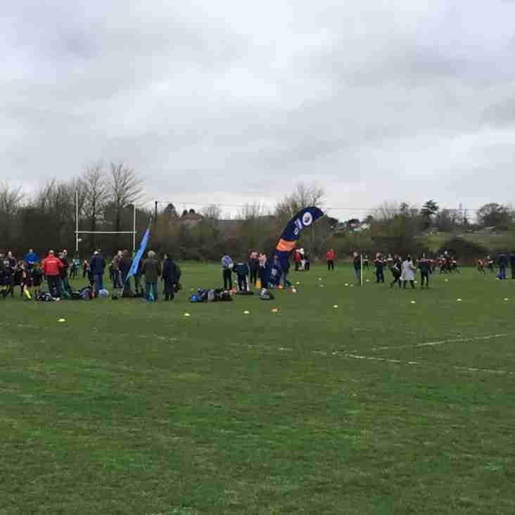 A successful Tri-Tournament for FRFC Minis on 15.03.19