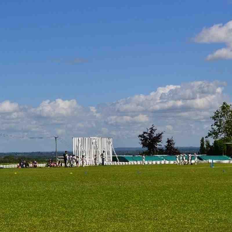 Kwik Cricket Sunday 8th June 2014