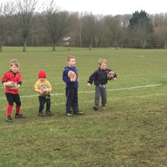 Mini's & Junior training