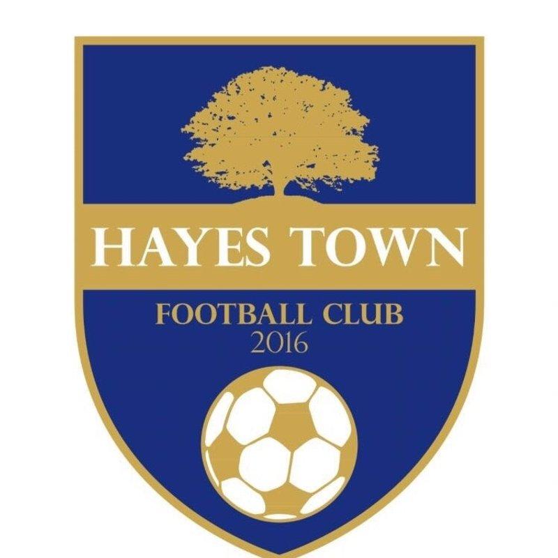 Hanworth Sports 1 - 1 Hayes Town Football Club