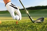 Annual Golf Day on May 22nd