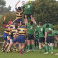 This Weekend's Rugby