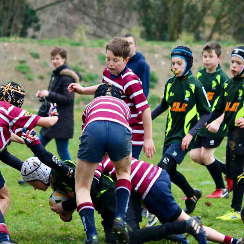 BSE vs Shelford 25 March