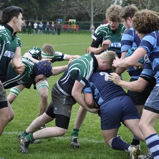 Champagne Rugby Colts Style