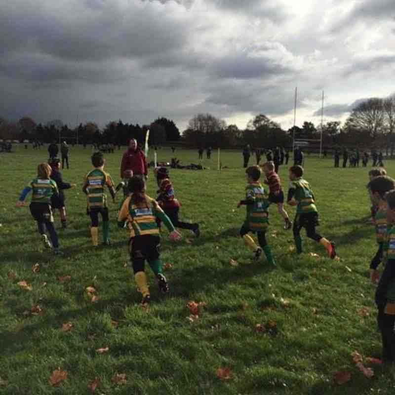 Norwich U9s Vs Crusaders U9s