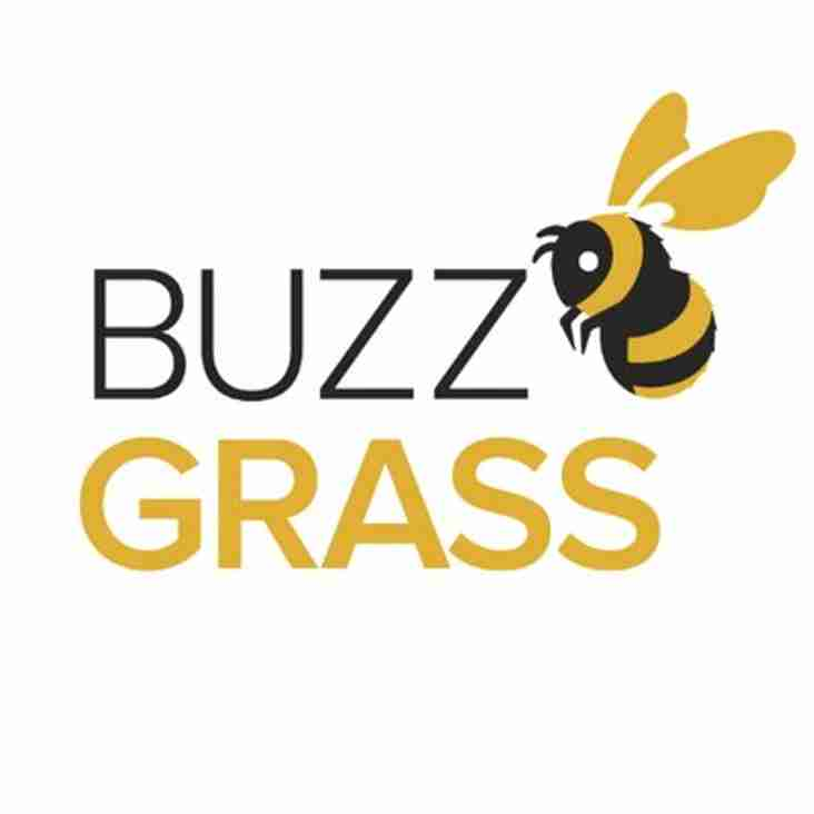 BuzzGrass by SIS Pitches
