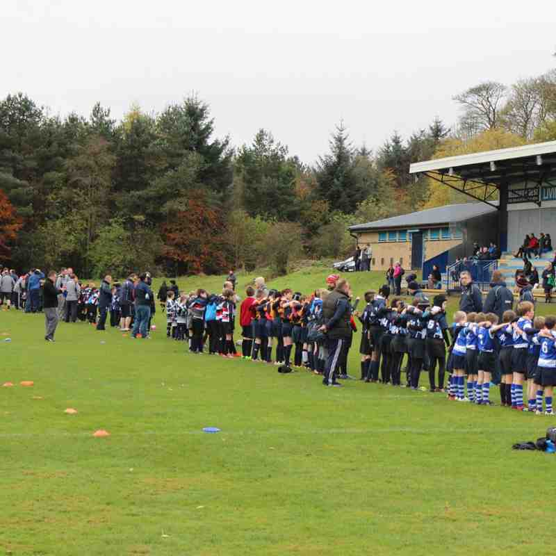 LRFC P7  v RHC Cougars RFC & Queensferry RFC - Sun 13 Nov 2016