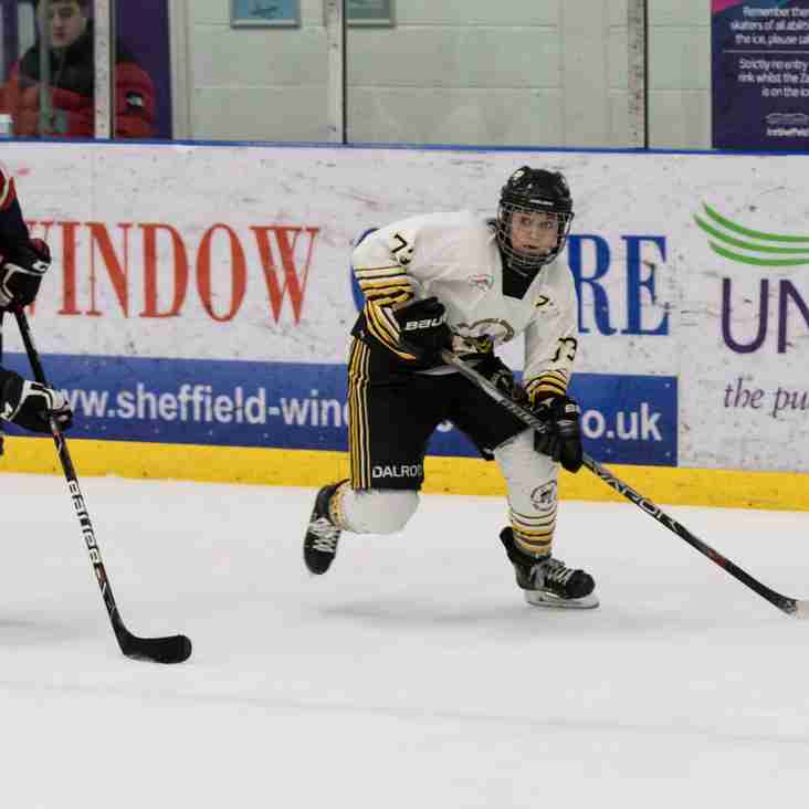 Queen Bees held at home - Match Report
