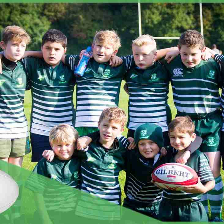 Basildon RFC Mini's are recruiting new players