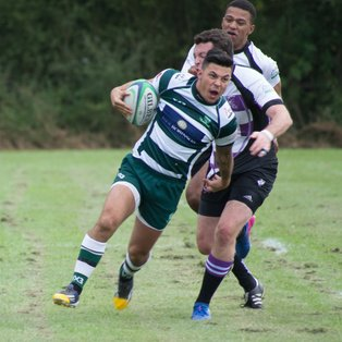 Basildon First XV Lose to Woodford RFC