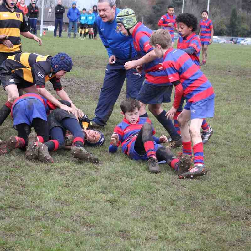 U12s vs Thornbury