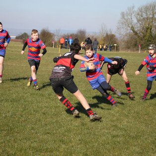 Super Performance From the U12s