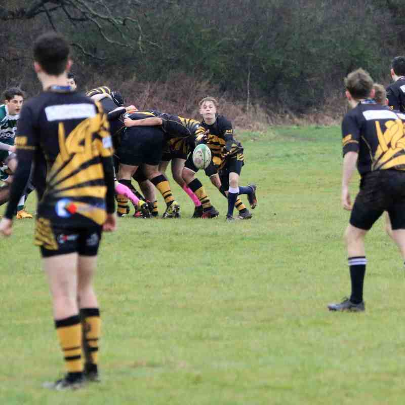 Tadley Tigers vs Slough RFC U16