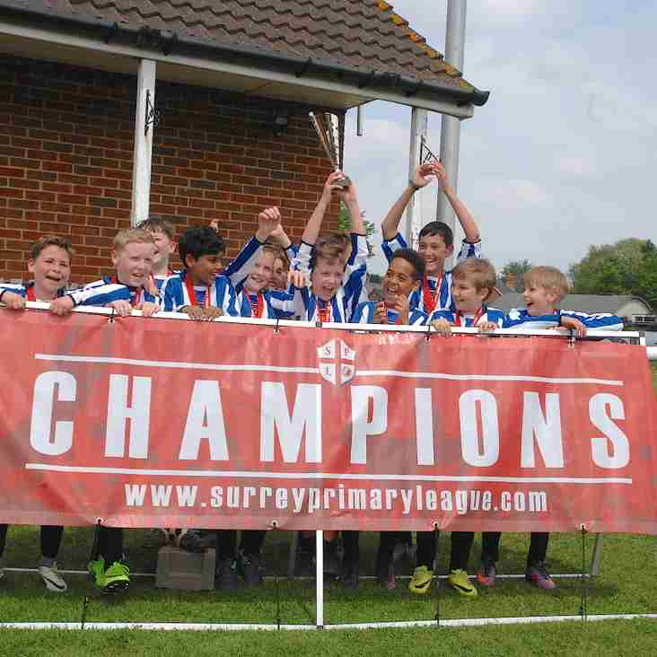 A Fantastic Cup Win for Mayford AFC U12 Tigers!