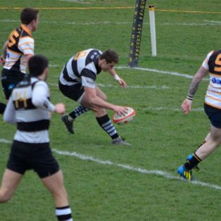 Rampant Farnham win relegation scrap.