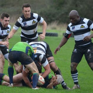 Back row dominate as Farnham swamp New Milton