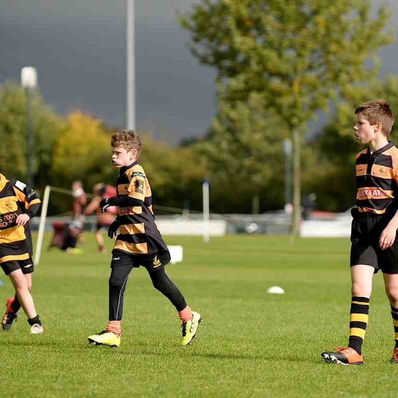 U11 OA Development Festival (16 Oct 16)