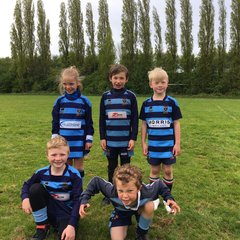 Leicester Tigers' under 7s festival