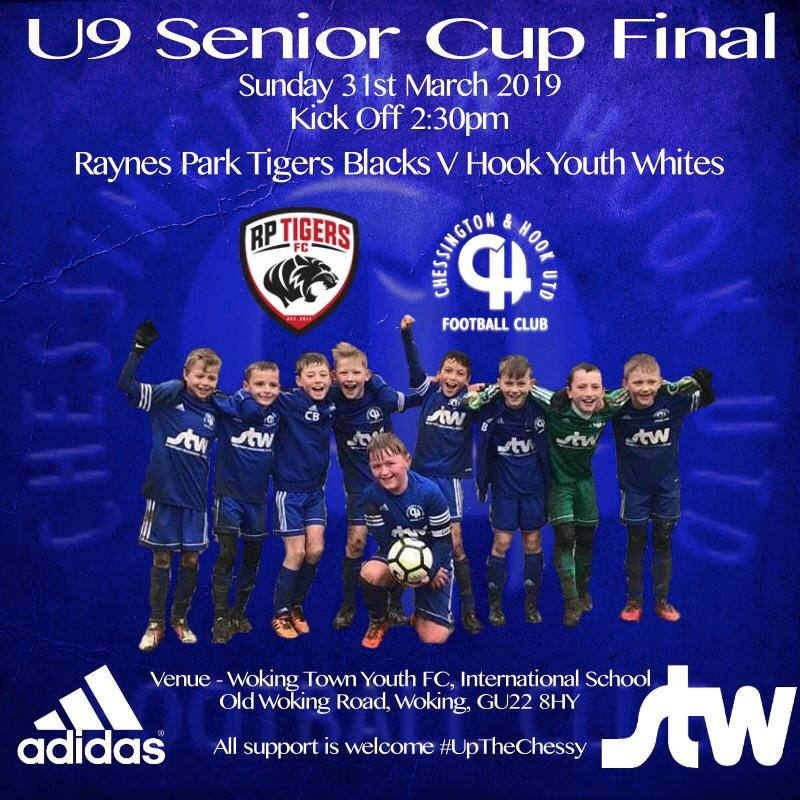 Hook Youth U9 Whites Reach Cup Final