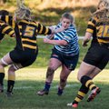 Halifax Ladies v Derby Vipers